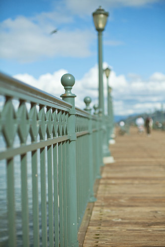 Fence Friday . . . {along the pier}