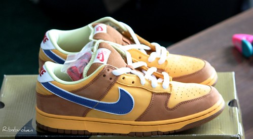 Nike Dunk Low SB New Castle