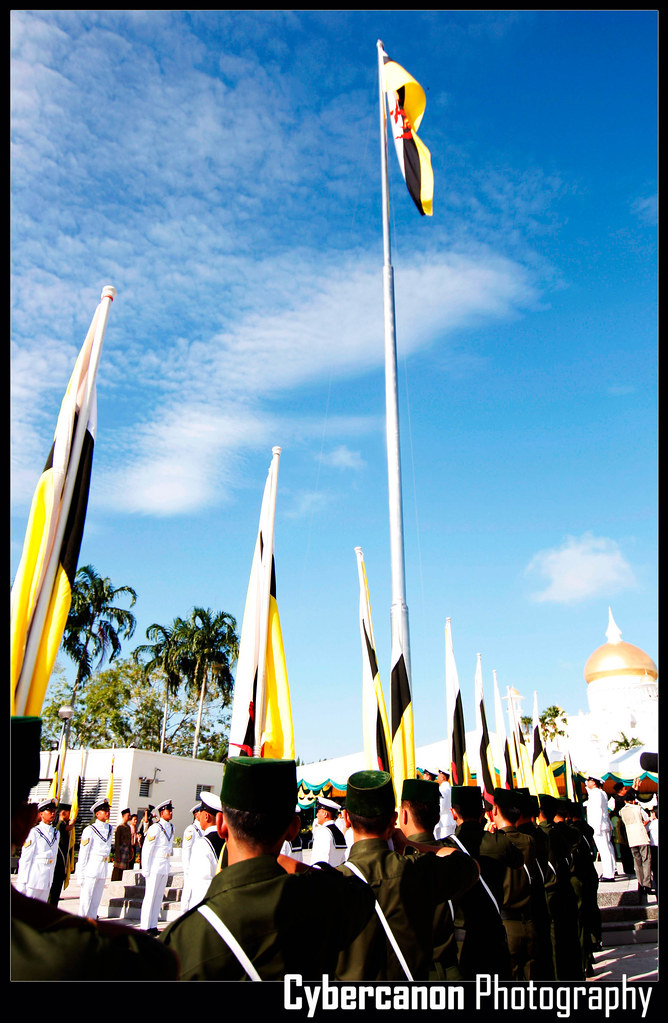 National Flag Rising 2010