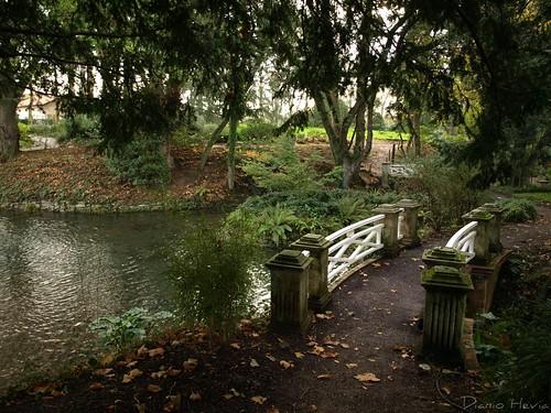 Jardín Botánico 2