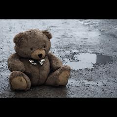 ...Sad Bear...