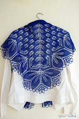Haruni (sew-mad) Tags: blue knitting lace shawl blau kornblume stricken tuch haruni wollmeise sewmadbadge sewmad