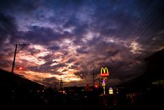 hungry sky