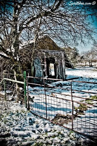 frostybarn2010