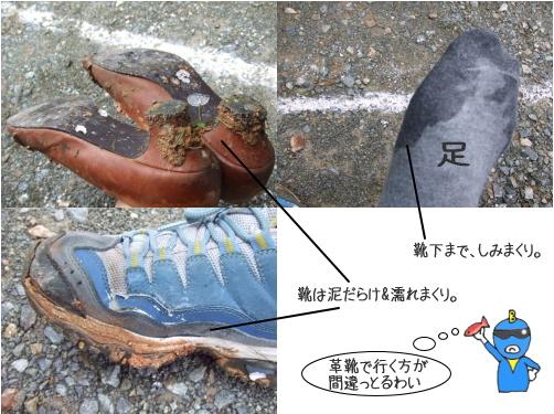 芝桜の名所 花夢の里 ロクタン24