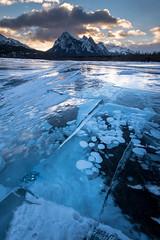 Abraham II (Sandra Herber) Tags: abrahamlake alberta bubbles frozen ice winter