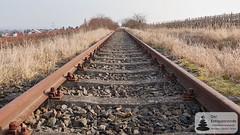 Kein Zug mehr auf diesen Schienen