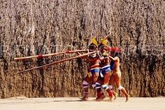 As flautas rua (www.renatosoares.com.br) Tags: brasil arte xingu indios cultura pintura antropologia etnias yawalapiti