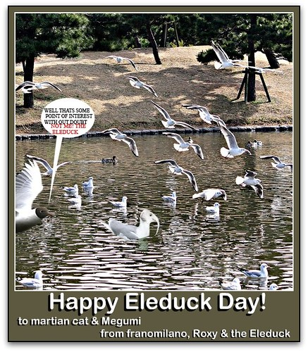 Happy Eleduck Day! (by martian cat)