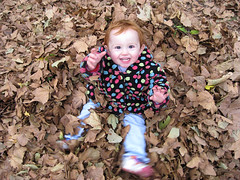 leaves2 = Speck in a dotty coat, happily seated in a pile of leaves