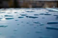 (katie.houck) Tags: seattle blue wet water car rain drops paint dof bokeh pools hood