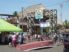 Monterrico Turtle Festival.