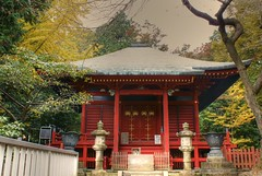 Mountain Temple, Mt. Takao (torode) Tags: autumn mountain japan hiking  monkeys   takao     bentorode benjamintorode