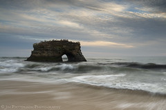 Natural Bridges State Park - Santa Cruz, California (Jim Patterson Photography) Tags: pictures ocean california statepark longexposure sunset sea sky usa santacruz seascape bird beach nature water clouds landscape photography bay coast sand marine rocks waves arch natural pacific photos cove wildlife seagull tripod shoreline rocky wideangle pelican coastal lee coastline naturalbridges reallyrightstuff statebeach remoterelease nikkor1224mm graduatedneutraldensityfilter nikond300 markinsm20ballhead jimpattersonphotography jimpattersonphotographycom montereybaynationalmarinesancturay goldenblog2010 seatosummitworkshops seatosummitworkshopscom