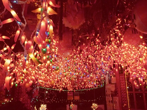 Panna Lights