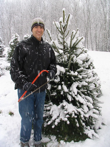 Rudi and Our Tree