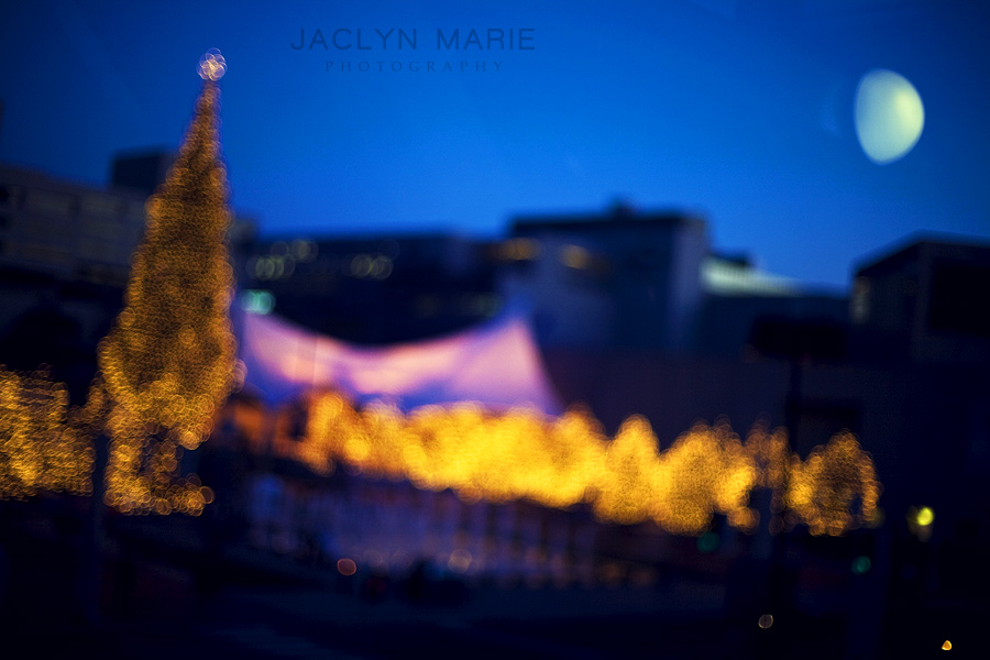 The Mayor\'s Christmas tree by the skating rink at Crown Center in Kansas City, Missouri photo