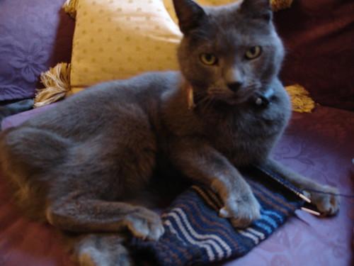 Mr JK's xmas socks (1)