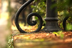 @|  : 360/365 (helen sotiriadis) Tags: brown black green architecture canon fence iron dof bokeh depthoffield explore swirl 365 frontpage canonef100mmf28macrousm canoneos40d toomanytribbles villakazouli