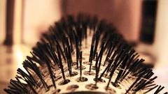 Anglų lietuvių žodynas. Žodis hairbrush reiškia šepetys (plaukams) lietuviškai.