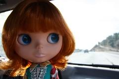 matilda on the road