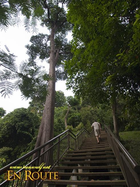 Mt Faber Marang Trail