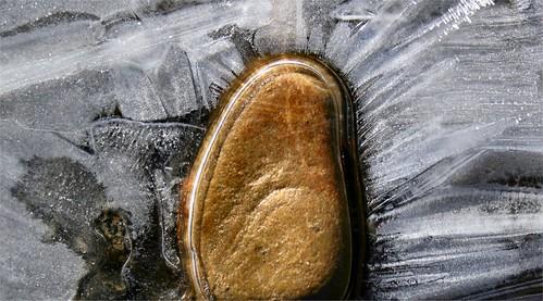 2010 janvier 19 Bords de chemin gelé (6)