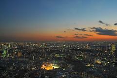 Tokyo 2009 - 六本木 - 森ビル(3)