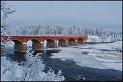 Vecais ķieģeļu tilts (Bargais) Tags: bridge winter river bricks latvia venta watter latvija kuldiga upe ziema tilts kuldīga ūdens ķieģeļi