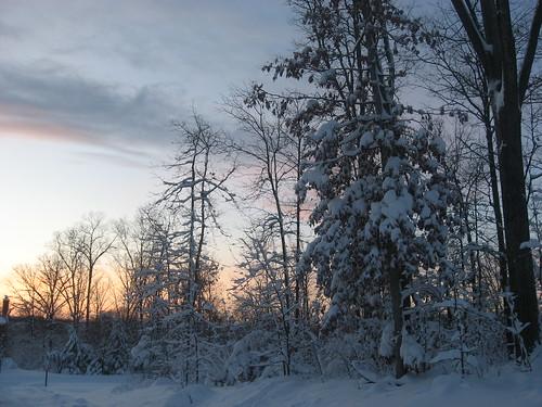 Snowpocalypse2 DC Feb 2010 Loudoun County 9