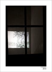 Sophie Herb, Sentiers Incertains, 2010 (kidplastic) Tags: art les sophie loup maison vernissage espace dans bois herbe vide crugny contemporain sentiers promenons fevrier2010 incertains