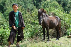 Man and his pony! (Noel Molony) Tags: family children rice health stories waterpumps healthcentre monvillage concernstaff educationonhealth hamkongvillage haumeuangdistrict pakhataivillage pasortvillage salongvillage salorvillage samhouay sopkhamvillage tarkaivillage thathvillage