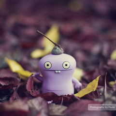 Autumn Babo (5/30) (Morphicx) Tags: autumn tree fall colors dutch canon garden actionfigure 50mm purple action bokeh f14 vinyl ish ugly 5d uglydoll 50 deventer uglydolls babo 5014 ilovebokeh bokehwhore cinnamonrose uglydollsunite cinnamonroseaction uglydollunite