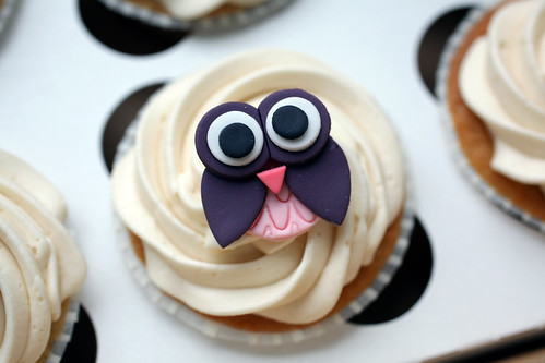 Olivia's owl cupcake