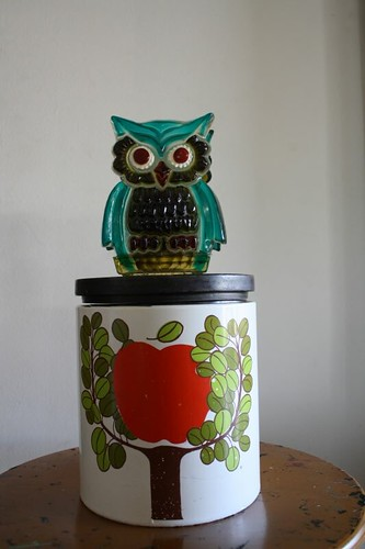 owl and apple tree