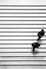Escadaria Dar - Museu do Louvre (rbpdesigner) Tags: bw paris france slr art museum canon lights luces blackwhite europa europe ledefrance museu arte noiretblanc louvre culture frana pb muse bn 5d luzes museo francia pretoebranco cultura negre palaisdulouvre parijs pars parigi musedulouvre thelouvre champslyses pirmide louvremuseum  pary parys    llens canoneos5d  pariis museudolouvre 1erarrondissement canonllens museodellouvre parizo 1arrondissement  lentel grandlouvre lapyramideinverse canonef1635mmf28liiusm 1635mmf28lii velhomundo schwarzundweis pirmideinvertida greatlouvre velhocontinente palciodolouvre escadariadar  pars