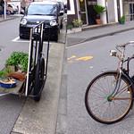 BONSAI bike 盆栽自転車 (parallel 3D) thumbnail