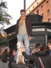 No B day - Uomo con cane (LiberaReggio) Tags: b roma san day no massa piazza popolo viola mafia berlusconi giovanni manifestazione repubblica corteo noponte folla nobday