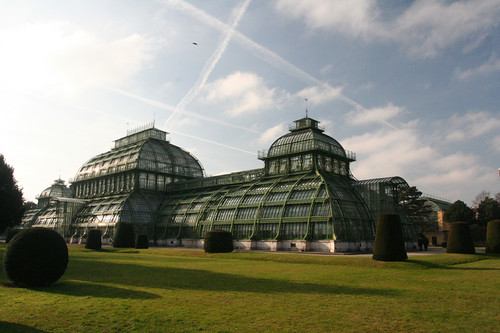 Schönbrunn greenhouse