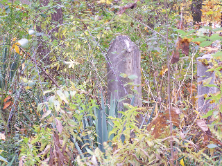 Hurt-Family-cemetery-WV_100_4086