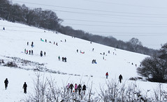 People on sleds (best mistake) Tags: snow hill sleds