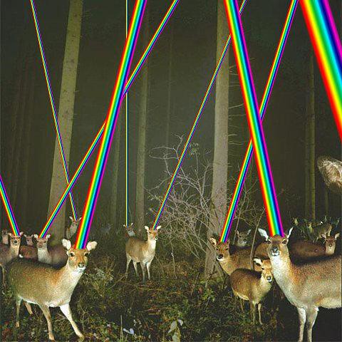 laser deer