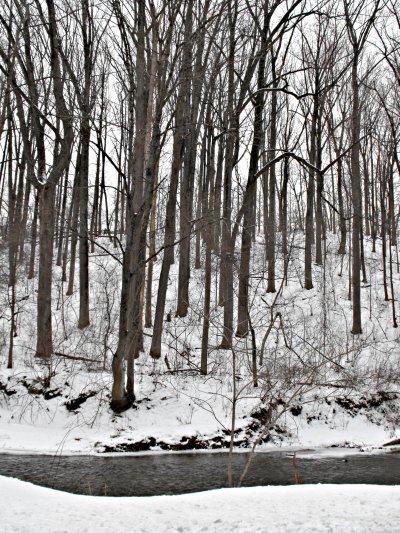 winter wonderland 3 blog