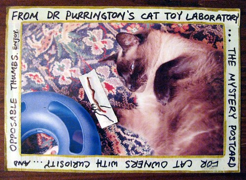 From Dr Purrington's Cat Toy Laboratory