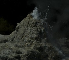 Lady Knox Geyser (Paul Schreiber) Tags: newzealand rotorua nz northisland geyser waiotapu ladyknox waiotaputhermalwonderland