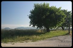 Elcito (GiulianoGiam84) Tags: italy panorama alberi montagne canon eos italia 1785mm marche macerata elcito 40d sanseverinomarche