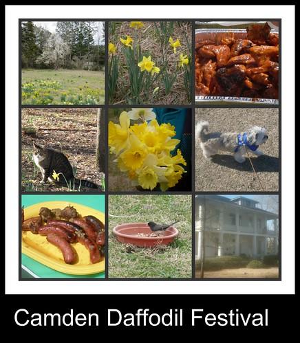 daffodil festival 2010