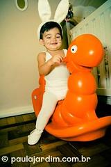(Paula Jardim, Fotgrafa RJ) Tags: party baby riodejaneiro rj beb festa coelho 1ano fotgrafa coelhinho coelhinha paulajardim