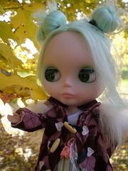Apple loves autumn!