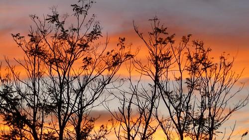 CH Sunset